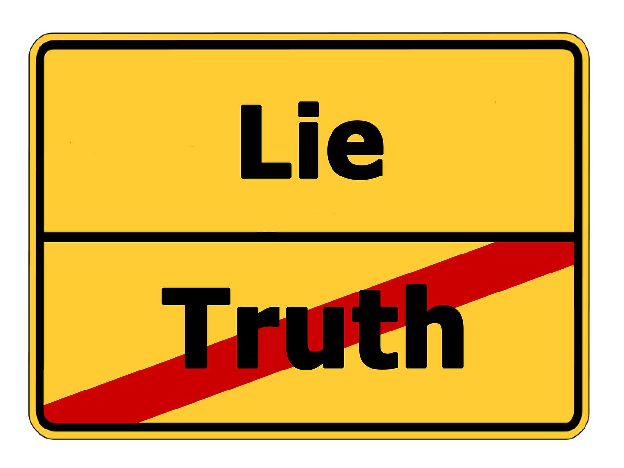 嘘を付ける状況においての「正しく申告してください」はまったく意味をなさない